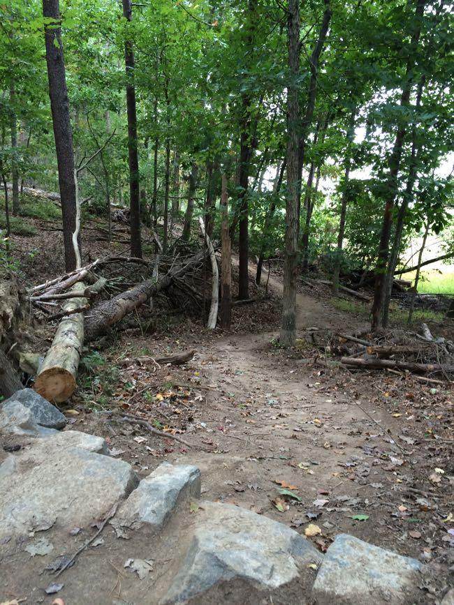 Steep trail Lake Fairfax Park