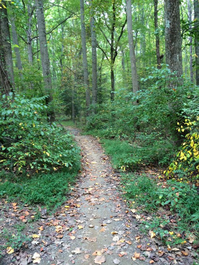 Trail Lake Fairfax Park v