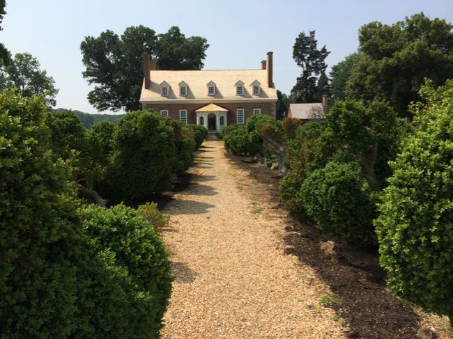 Gunston Hall boxwood allee, Mason Neck Virginia