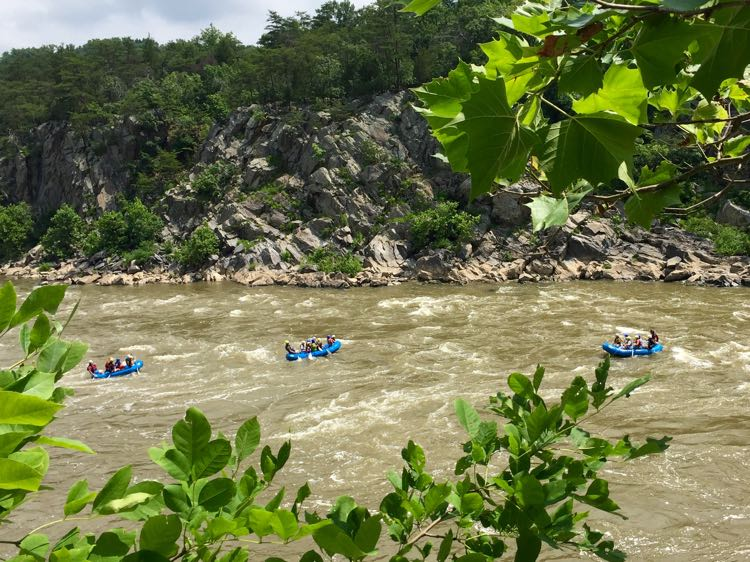 Rafting through Mather Gorge at Great Falls Park VA