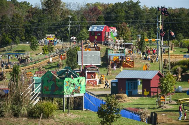 2017 pumpkin patch fun with paid admission - Halloween Northern Virginia