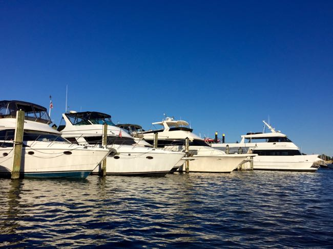 Yacht line-up Annapolis