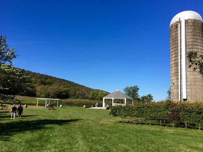 Dukenie Winery back yard
