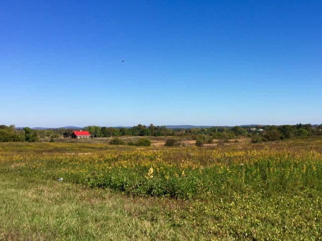 View from Route 690 Purcellville