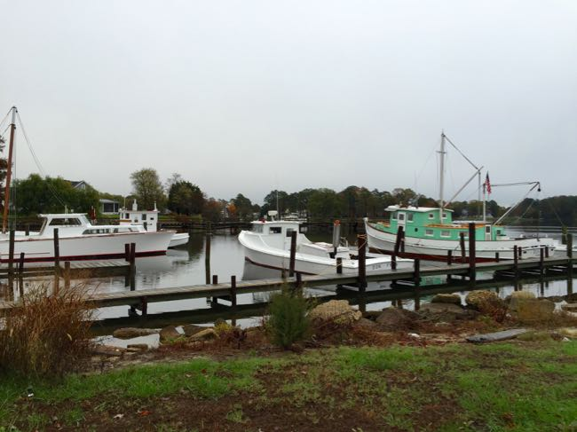 Boats on Cockrell's Creek, Reedville