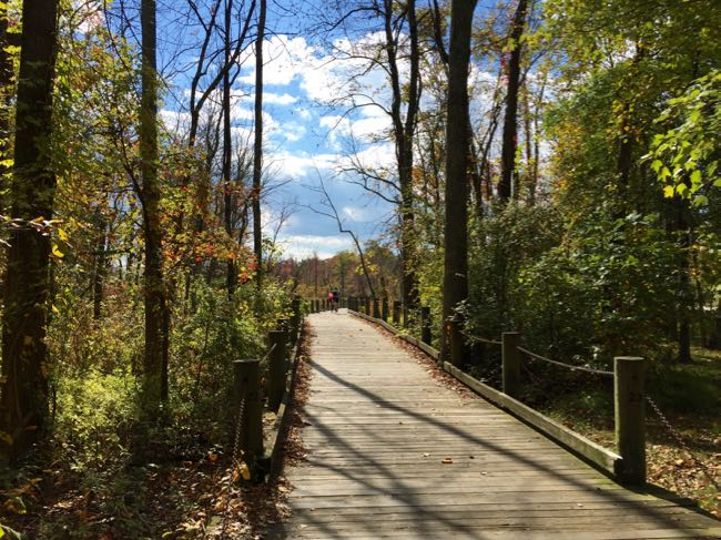 Mount Vernon Trail follows the Potomac River and is one of the closest Northern Virginia bike trails to Washington DC