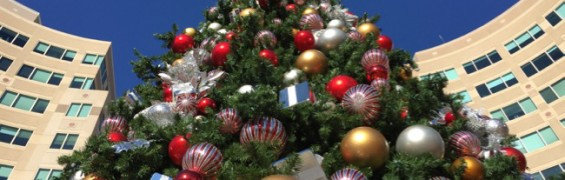 Reston Town Center Christmas tree 2015