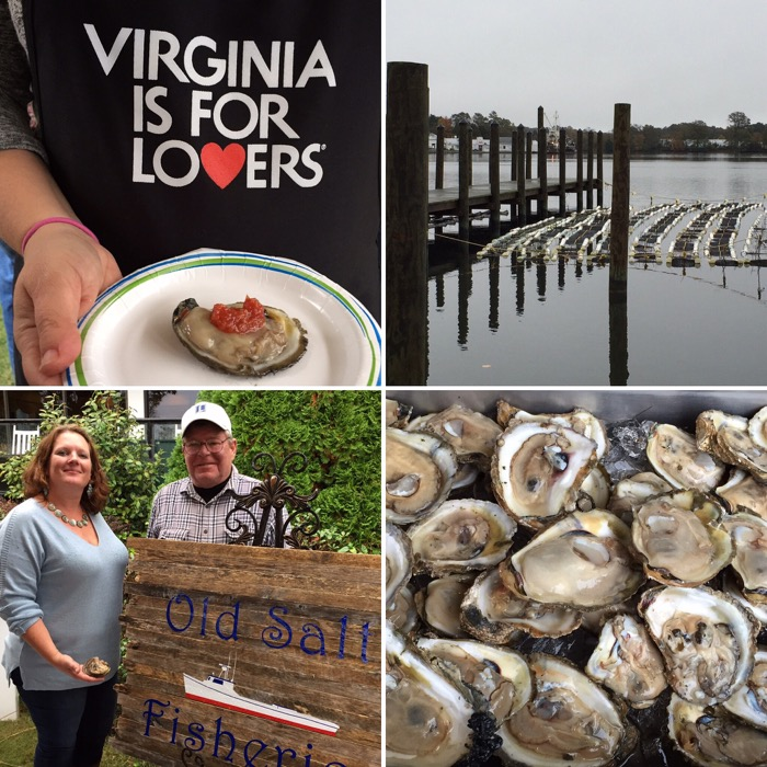 Virgnia is for oysters Northern Neck
