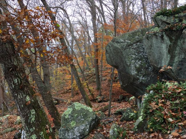 Rock outcropping PHT Scotts Run loop hike