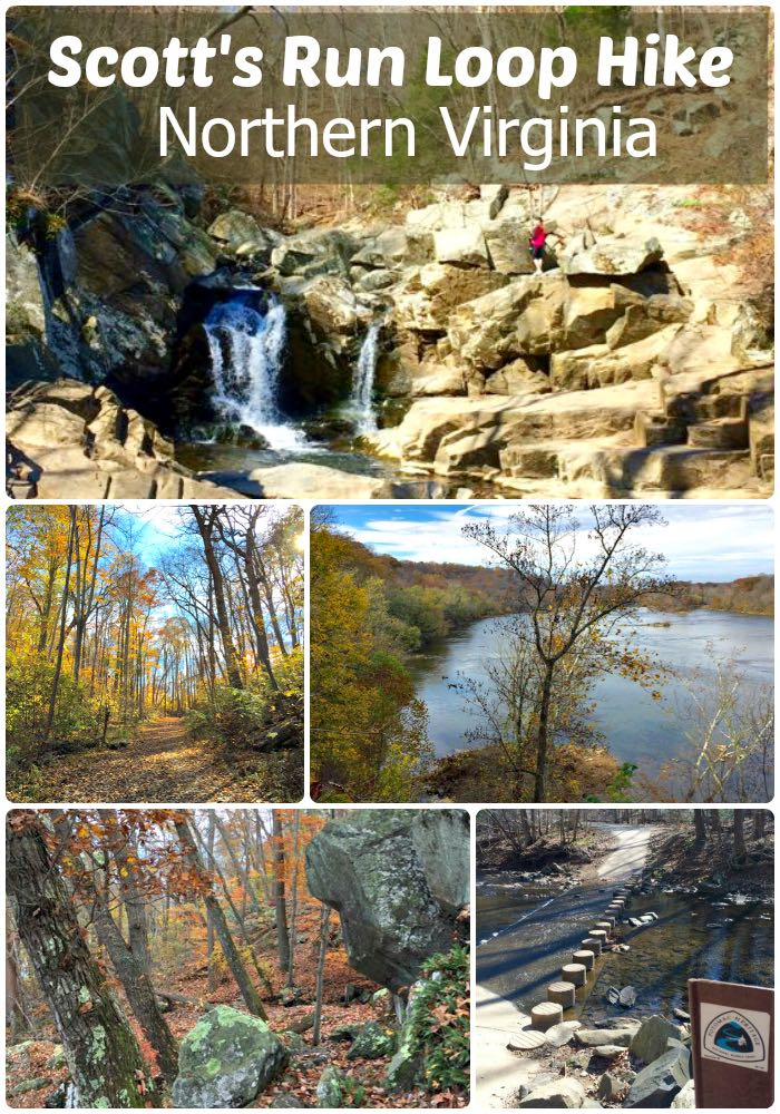The Scotts Run loop hike includes a cliffside view, scenic waterfall, and a nice, somewhat challenging stretch of the Potomac Heritage Trail in Virginia, close to DC.