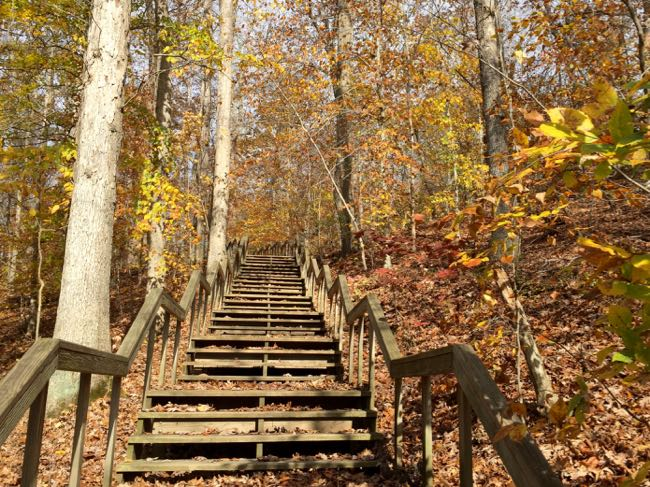 Stairs to Parking Lot Connector Scotts Run