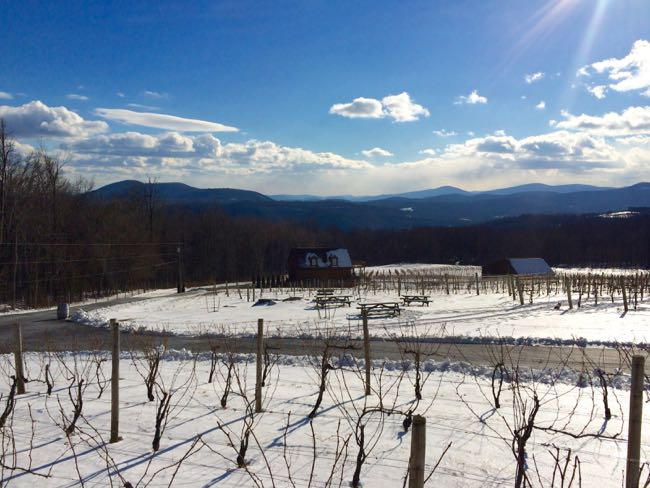 Fox Meadow Winery view