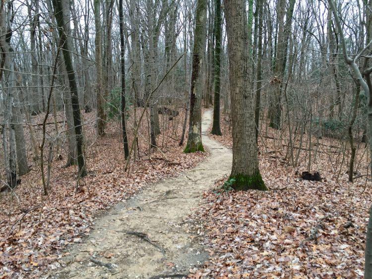 Lees Woods Trail Leesylvania State Park Virginia