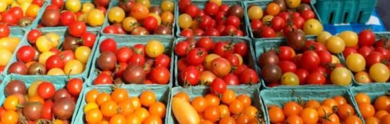 Farmers Markets 2019 tomatoes