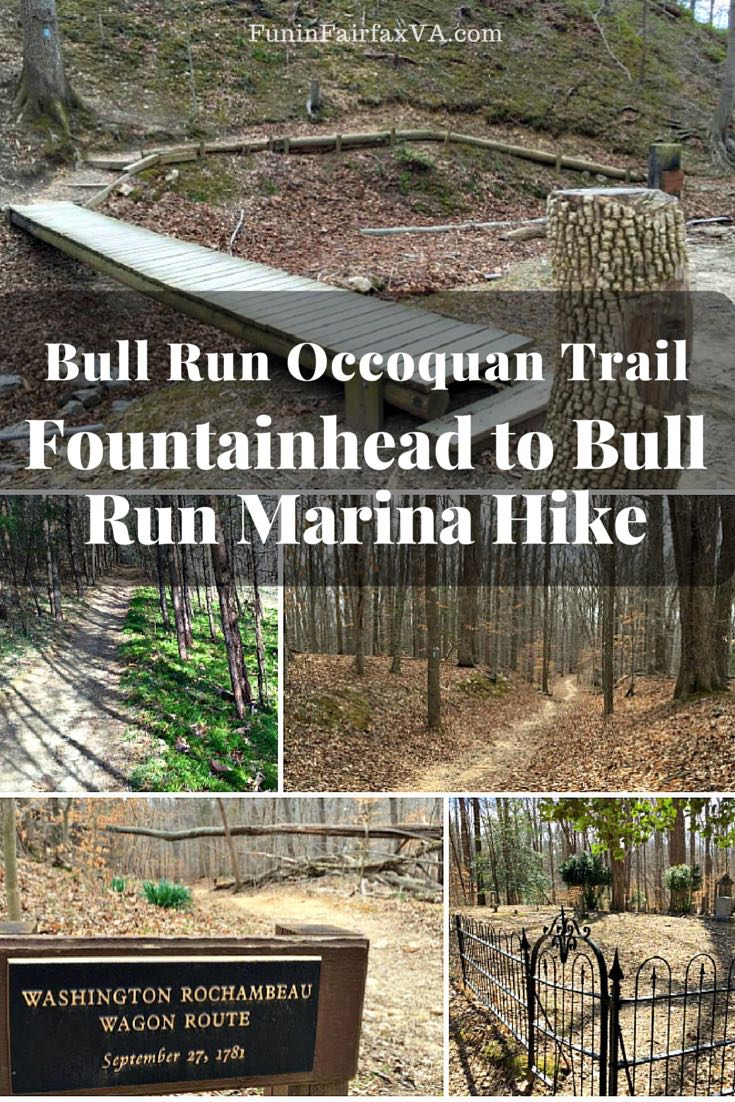 The Fountainhead to Bull Run Marina hike weaves through the woods on the Bull Run Occoquan Trail, climbing ridges that border Occoquan Reservoir.