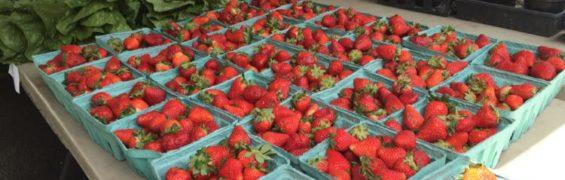 Manassas Farmer's Market Virginia