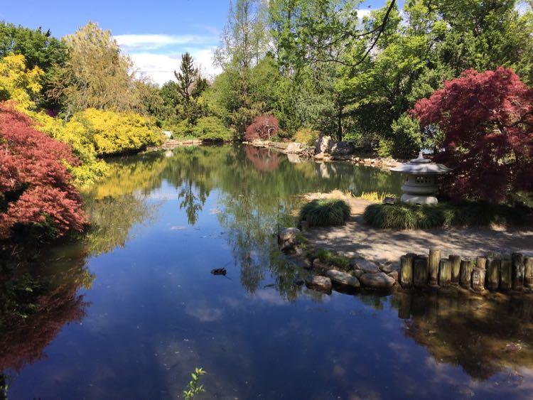 Lewis Ginter Botanical Garden Blooms In Richmond Virginia