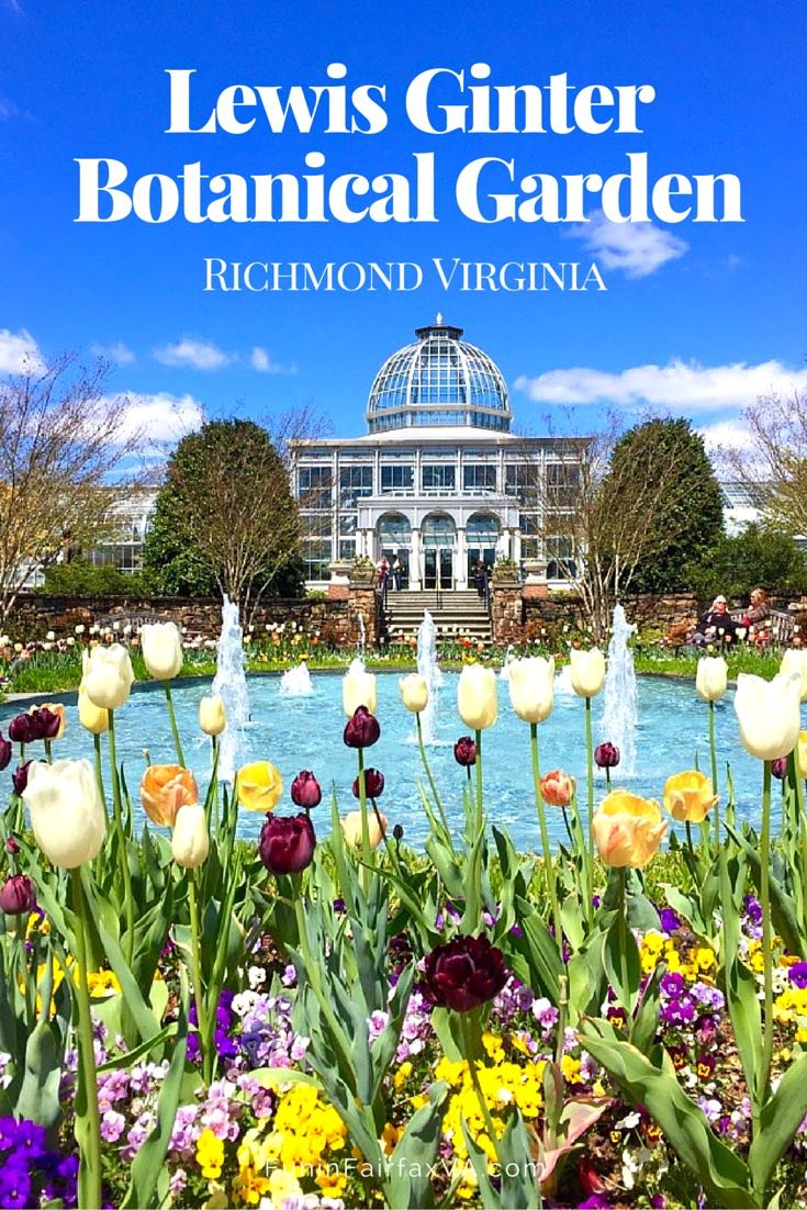 Visit Lewis Ginter Botanical Garden in Richmond, Virginia to wander the paths and exhibits and celebrate nature's beauty.