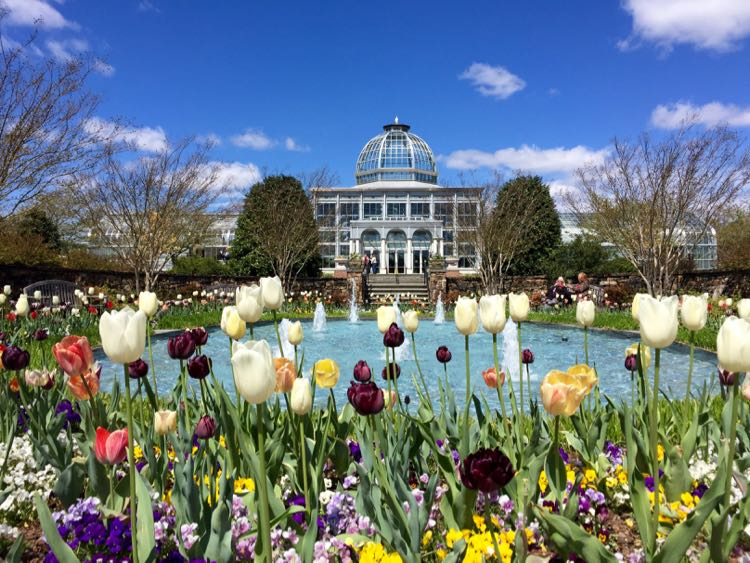 Spring Bucket List 30 Fun Outings In Virginia Dc And Maryland