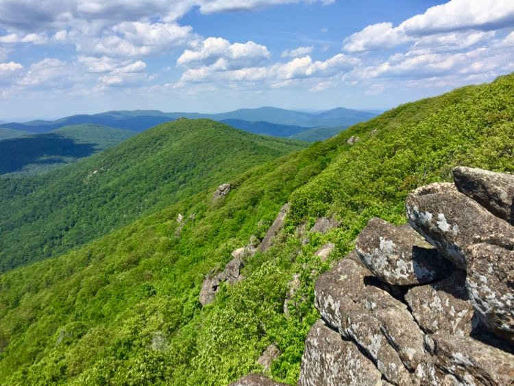 Summer View on a Marys Rock hike in Shenandoah NP