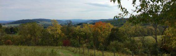 Explore Sky Meadows State Park Virginia