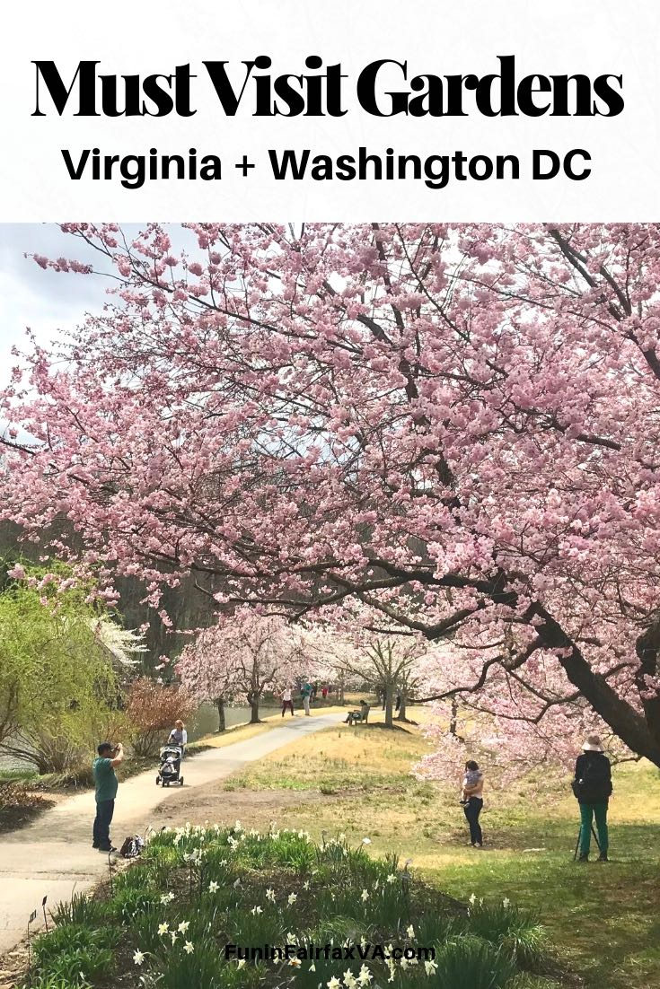 Must visit gardens in Virginia and Washington DC offer year-round inspiration and fun outings for nature-lovers.