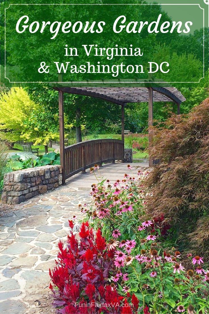 Gorgeous Gardens In Virginia And Washington Dc