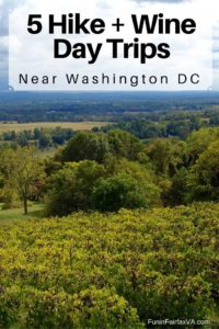 These 5 Virginia hike and wine day trips close to Washington DC combine two favorite things—a chance to enjoy nature, and a delicious glass of local wine.