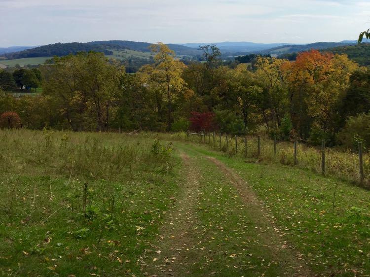 Descending Sky Meadows loop hike in fall