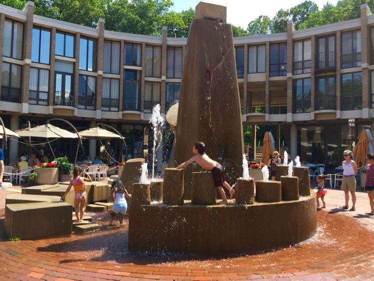 Fountain Lake Anne Plaza Reston