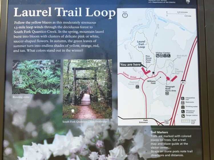 Laurel Loop trail sign Prince William Forest