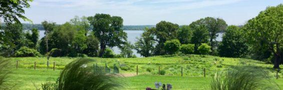 Peaceful River Farm Alexandria Virginia
