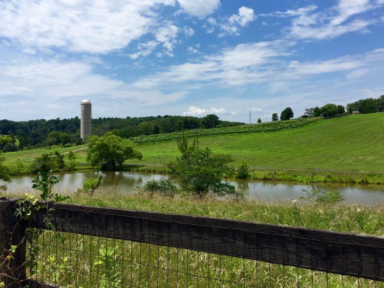 Scenic drive in Loudoun County Virginia