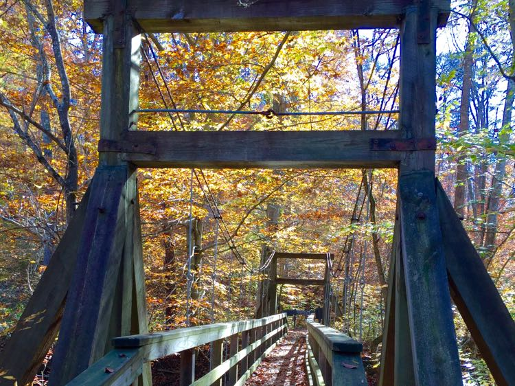 Bridge over Quantico Creek, hiking in Virginia's Prince William Forest Park