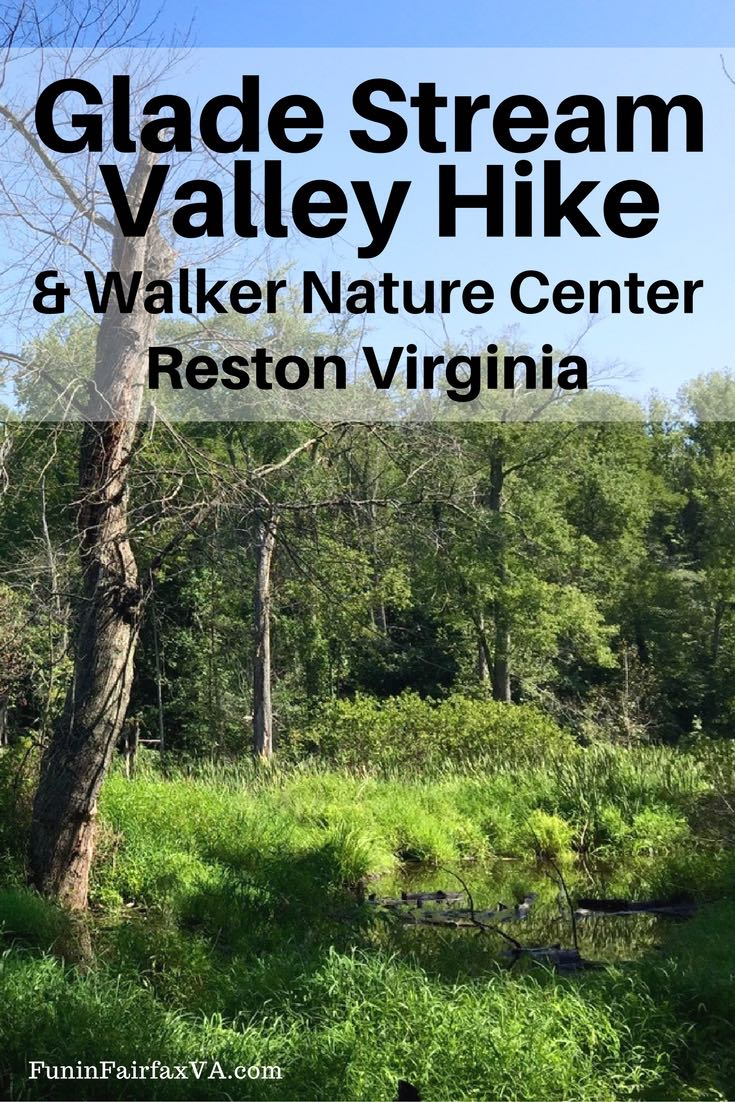 The Glade Stream Valley hike offers paved wooded paths along a restored section of stream with a stop at the lovely Walker Nature Center in Reston Virginia.