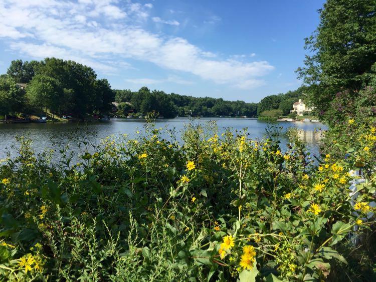 Lake Audubon Reston Virginia