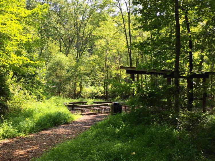 Picnic area near Soapstone Dr Reston