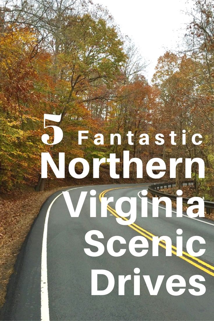 These 5 fantastic Northern Virginia scenic drives, with stops and activities along the way, are especially inviting when fall foliage and crisp days return.