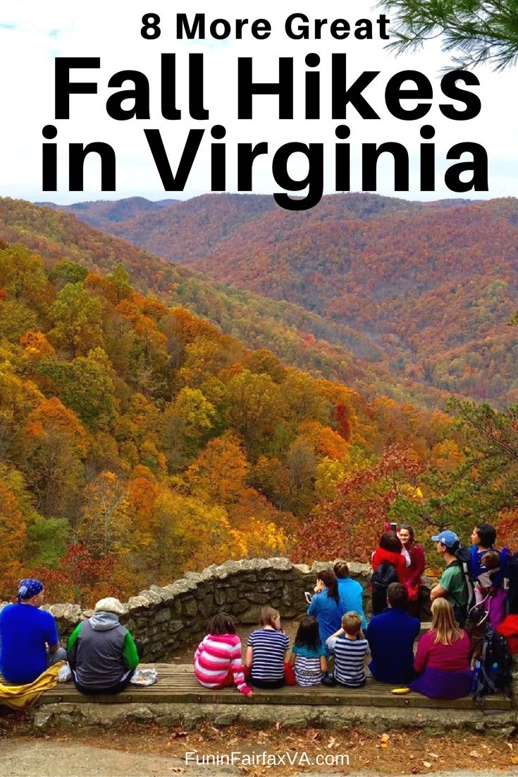 We've rounded up 8 more great fall hikes in Virginia that deliver beautiful foliage, stream-side paths, and awesome views made vibrant with Autumn colors.