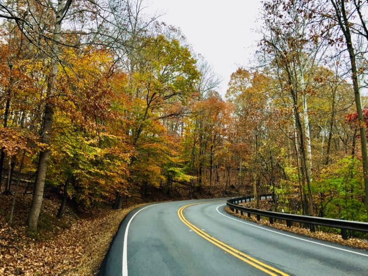 Fall foliage on a Georgetown Pike scenic drive near Washington DC