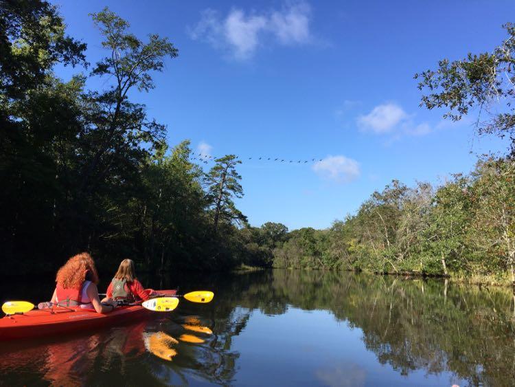Kayaking Nanticoke River Southern Delaware