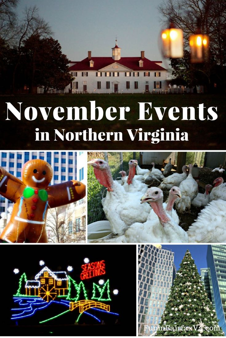 November events in Northern Virginia. Things to do in Virginia and Washington DC region. Pumpkin fests, Thanksgiving, holiday events.