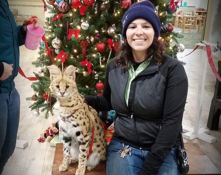 Christmas Village Leesburg Animal Park