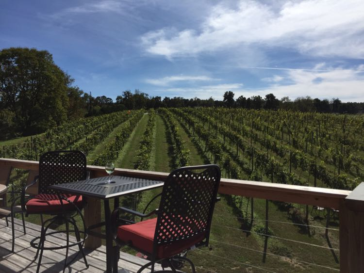 DeMello Vineyards Northern Shenandoah Valley