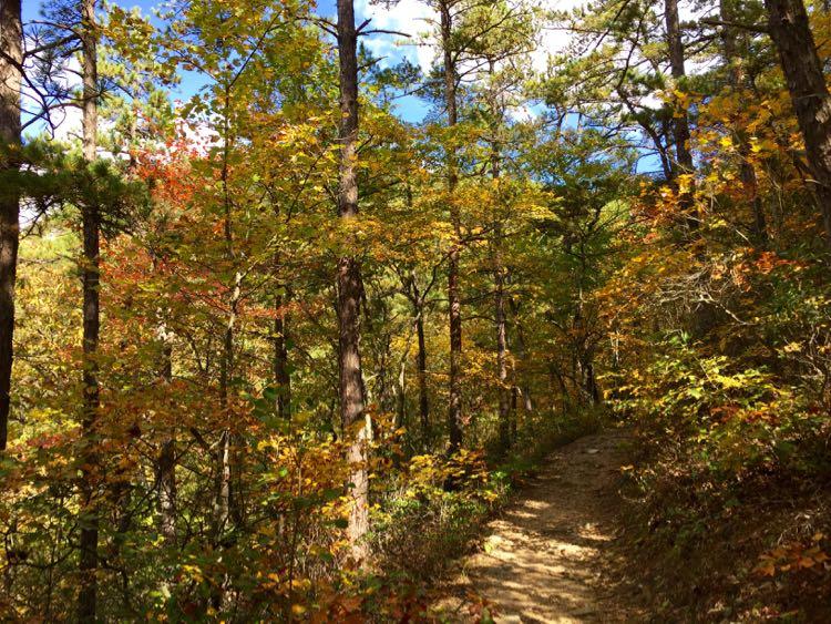 Trail Hone Quarry overlook Rockingham County VA