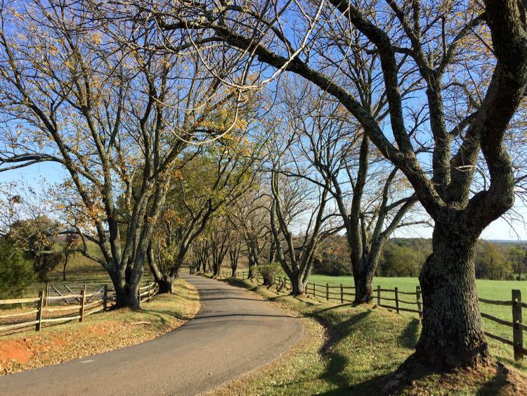 Road to James Monroe Highland Charlottesville getaway Virginia