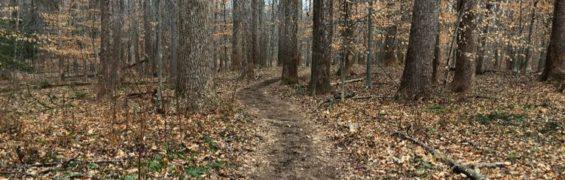 Bootlegger Trail Riverbend Park