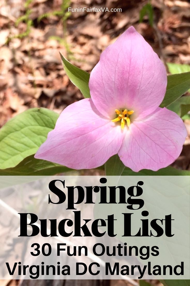 Virginia, Maryland and Washington DC gardens, scenic drives, hikes, and parks perfect for fun spring bucket list outings for every age and ability.