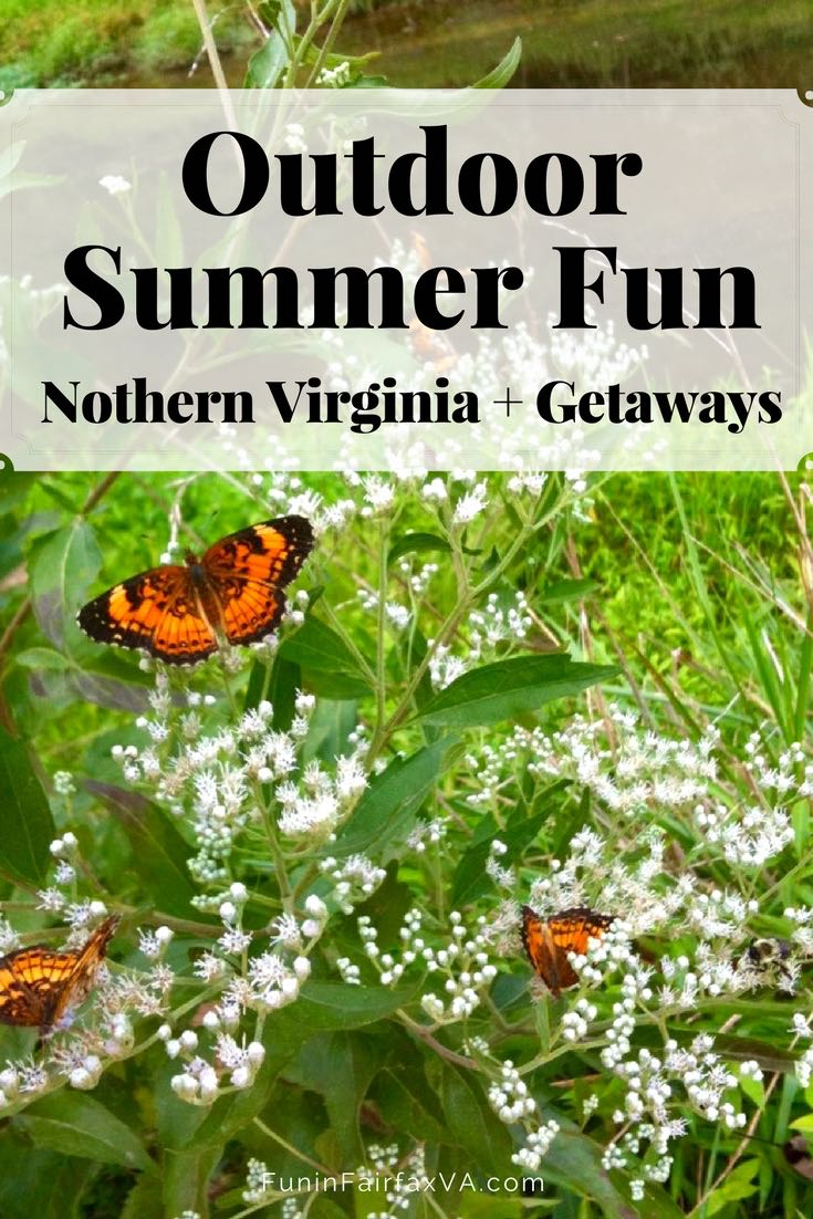 Virginia Travel   Outdoor Summer Fun in and Near Northern Virginia. Boating, hiking, swimming, biking, dining, drink, overnight escapes, and getaways to entertain the gang all summer long.