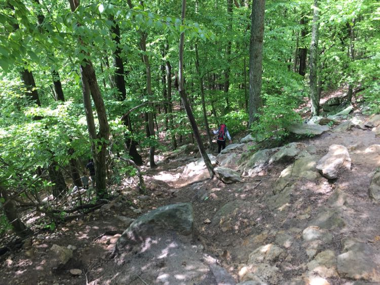 Orange Trail Sugarloaf Mountain MD